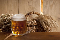 Still-life with beer. A still-life with beer and wheat Royalty Free Stock Images