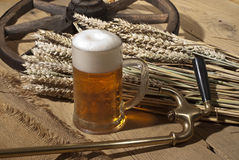 Still-life with beer Royalty Free Stock Images