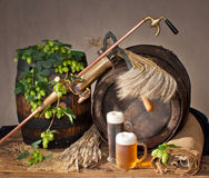 Still life with beer Royalty Free Stock Photos