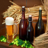 Still life with beer bottles Royalty Free Stock Photo