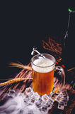 Still Life with of beer and draft beer with ice  by the glass.  Royalty Free Stock Image