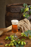 Still life with beer. And hop cones Royalty Free Stock Images