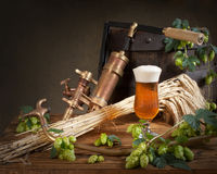 Still life with beer and hops Royalty Free Stock Images