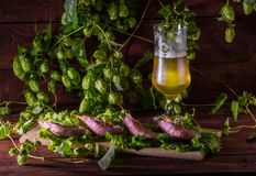 Beer with shrimps and salad on a wooden table Stock Images