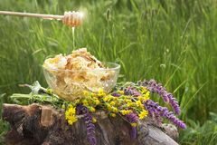 Still life wildflowers and beeswax with honey natural product stock photos