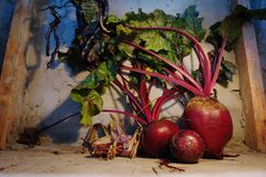 still life with beetroot and onion wooden floor Royalty Free Stock Photo