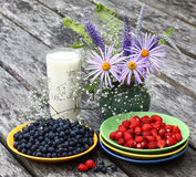 Still-life with berries. On old boards there are plates with a bilberry and wild strawberry,a glass with milk and a vase with a bunch of flowers Stock Photo