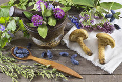 Still life with berries and mushrooms Stock Images
