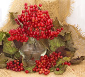Still life with berries Royalty Free Stock Images