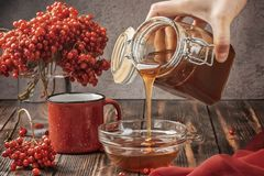 Still life berries of a viburnum in a glass and mug of hot tea and honey. On a wooden table. Hand pours honey in bowl. Autumn concept food agriculture Stock Photography