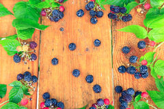Still life from black raspberry and green leaves. On the brown boards Royalty Free Stock Photos