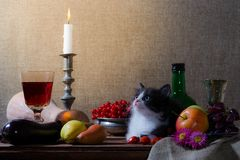 Still life with black and white kitten pumpkin grapes dog rose g stock image
