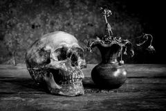 Still life black and white photography with human skulls on wood. Table Stock Photography