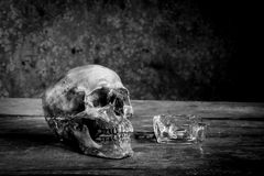 Still life black and white photography with human skulls on wood. Table royalty free stock photos