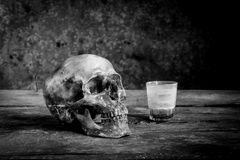 Still life black and white photography with human skulls on wood. Table stock image