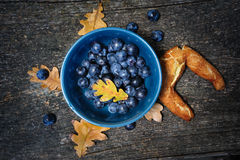 Still life with blackthorn and bagel Stock Photography