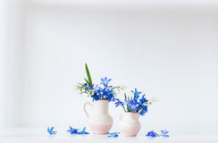Still life with  blue flowers Royalty Free Stock Photography