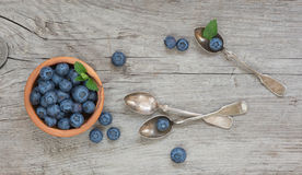 Still life with blueberry Royalty Free Stock Photography