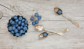 Still life with blueberry Royalty Free Stock Photos