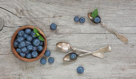 Still life with blueberry Stock Image