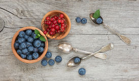 Still life with blueberry and red currants Royalty Free Stock Photos