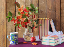Still life with books and autumn leaves. Still life with books, a cup with a blue pattern, apple and autumn leaves against from boards. Back to school Stock Image