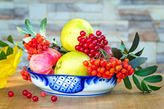 Still life: books and fruit and berries in a beautiful vase. Stock Images
