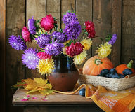 Still life with a bouquet from asters and chrysanthemums Royalty Free Stock Photos
