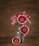 Still-life with a bouquet of asters Royalty Free Stock Image