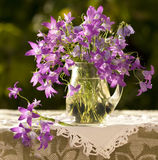 Still Life with a bouquet of bells stock images