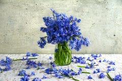 Still life bouquet blue tones Stock Photo