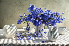 Still life bouquet blue tones white crockery Royalty Free Stock Photos
