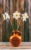 Still life of a bouquet of daffodils flowers in an old ceramic jug on a wooden vintage grunge background Royalty Free Stock Photo