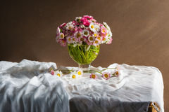 Still life bouquet daisies Royalty Free Stock Photos
