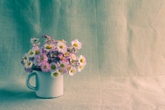 Still life bouquet daisies Stock Image