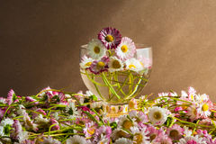 Still life bouquet daisies wooden table Royalty Free Stock Image