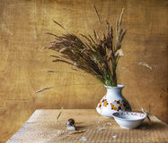 Still life with bouquet dried wild grasses worm Stock Images