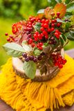 Still life with a bouquet of garden flowers and berries.herbal medicine.chokeberry, herbarium, bunch of mountain ash stock photos
