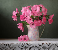 Still-life with a bouquet in a jug royalty free stock images