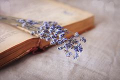 Still life with a bouquet of lavender and a book on the table. royalty free stock photos
