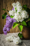 Still-life with a bouquet of lilac Stock Images