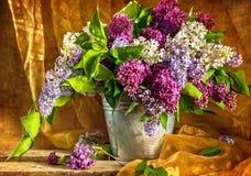 Still Life bouquet lilacs Stock Image
