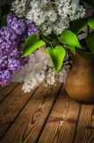 Still-life with a bouquet of lilacs Royalty Free Stock Image
