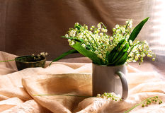 Still Life bouquet lily valley Royalty Free Stock Image