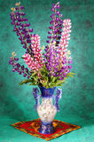 Still-life with a bouquet of lupines in a vase Stock Photos