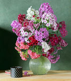 Still life with bouquet of pink Phlox in the clear jug stock photography