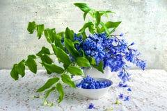 Still life bouquet polygonatum blue tones white crockery Stock Photography