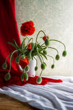 Still Life bouquet red poppies Royalty Free Stock Photo