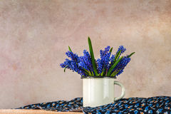 Still life bouquet spring flowers blue Royalty Free Stock Images