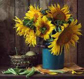 Still-life with a bouquet of sunflowers. Royalty Free Stock Photo